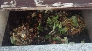 komposthaufen2